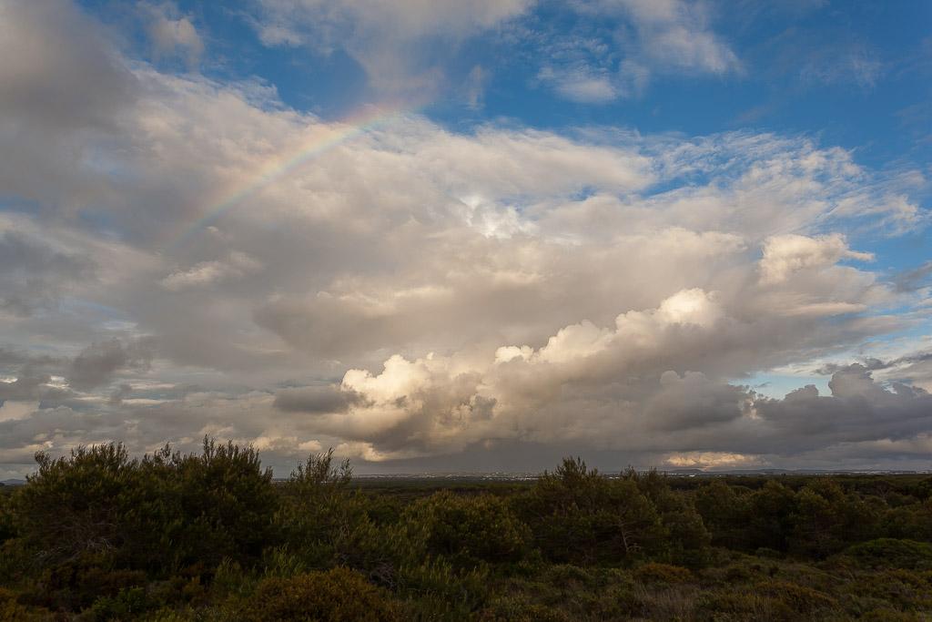 Revuelto de nubes